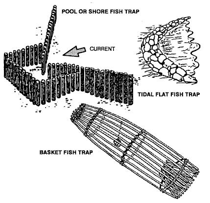 Fishing for food in a survival situation for Fish trap net