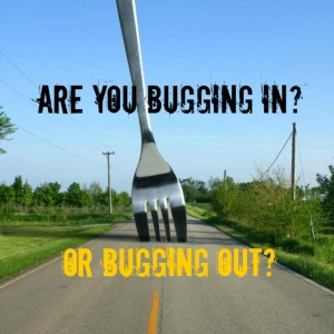 Are You Bugging In Or Bugging Out
