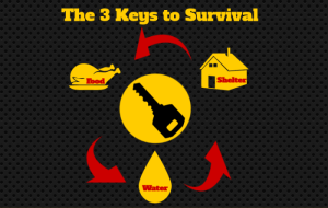 Prepping and Survival and When the S Literally HTF