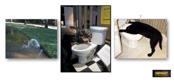 Toilet Water Sprinkler