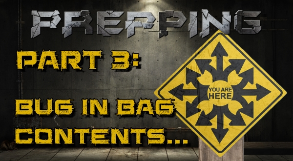 What Prepping Supplies Do I Need - Bug In Bags1