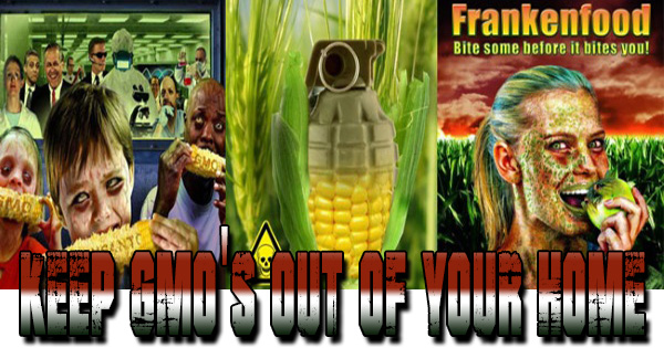 Keep Monsanto and GMO Out of Your Home