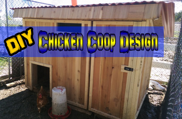 How to Build a Super Simple Chicken Coop
