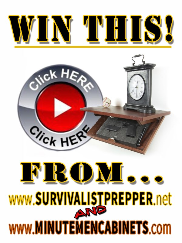 WIN THIS SECRET GUN SHELF