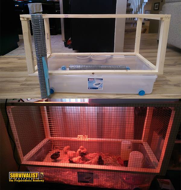 Chicken Brooder Before and After