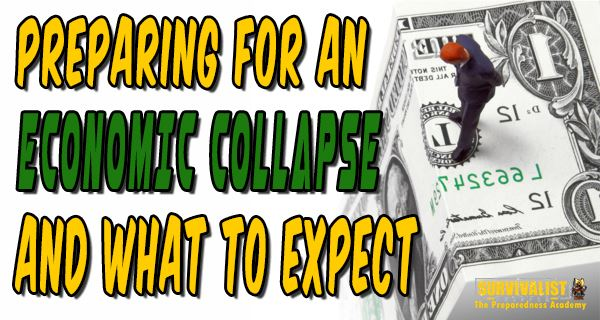 Preparing for an Economic Collapse and What to Expect