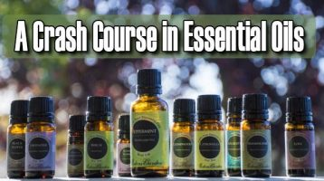 A Crash Course in Essential Oils for Preppers