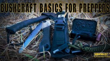 Bushcraft Basics for Preppers
