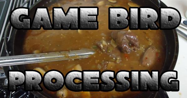 Game Bird Processing - Survivalist Prepper