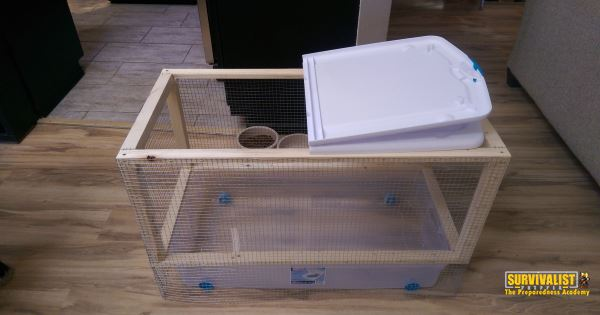 DIY Chicken Brooder Done