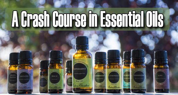 a-crash-course-of-essential-oils