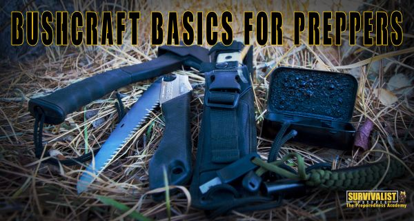 Bushcraft Basics for Preppers